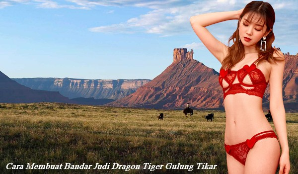 Cara Membuat Bandar Judi Dragon Tiger Gulung Tikar